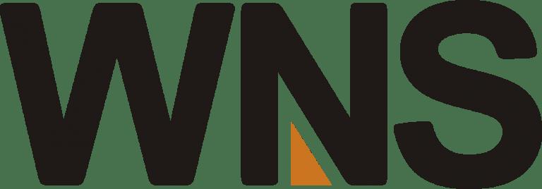 Wns Logo Logos Gaming Logos Nintendo Wii Logo