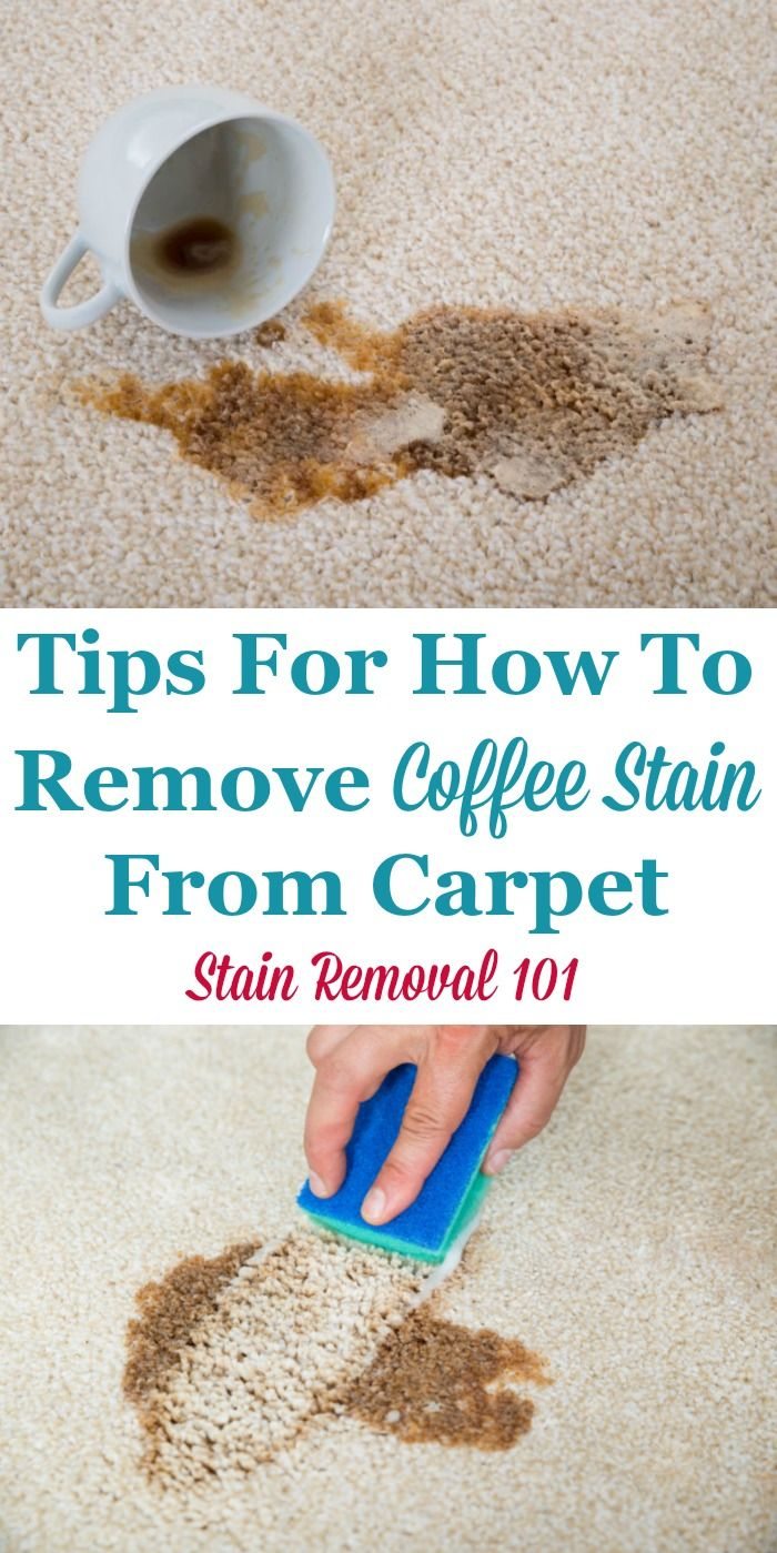 Remove Coffee Stain From Carpet >> Tips For How To Remove Coffee Stain From Carpet When You