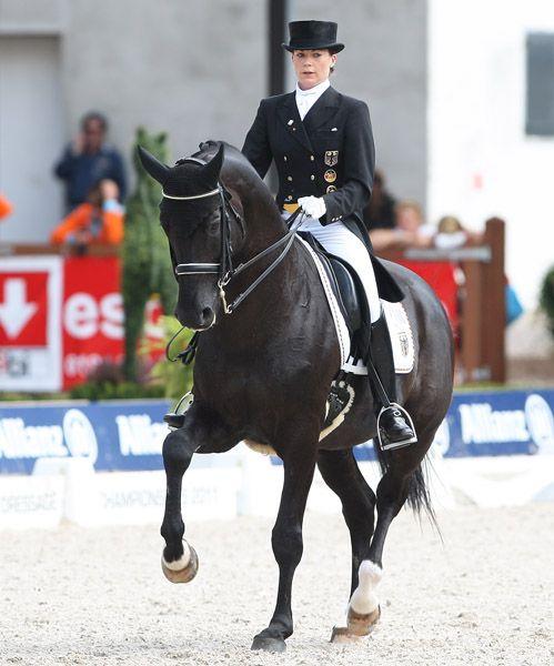 Kristina Sprehe And Desperados Dressage Horses Equestrian Dressage Equestrian Events