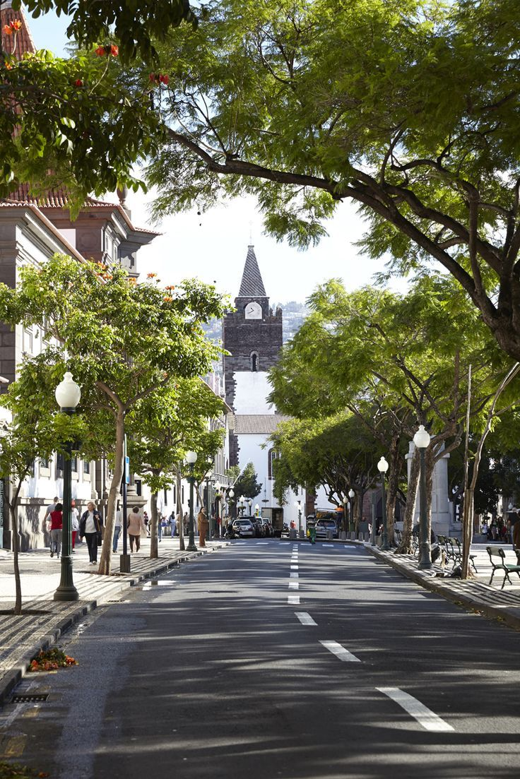 Funchal Cathedral Madeira Island Portugal Madeira Pinterest