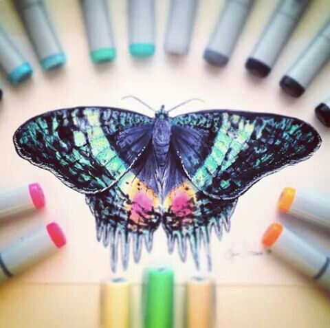 Rara y muy impresionante mariposa♡♡