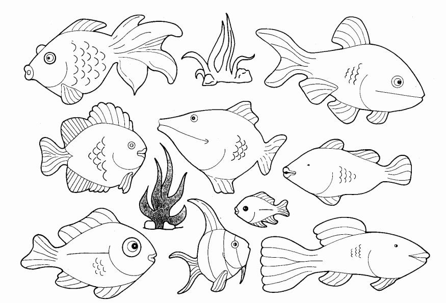 Small Animal Coloring Pages New To Colour Fish Fish Coloring Page Animal Coloring Pages Geometric Coloring Pages
