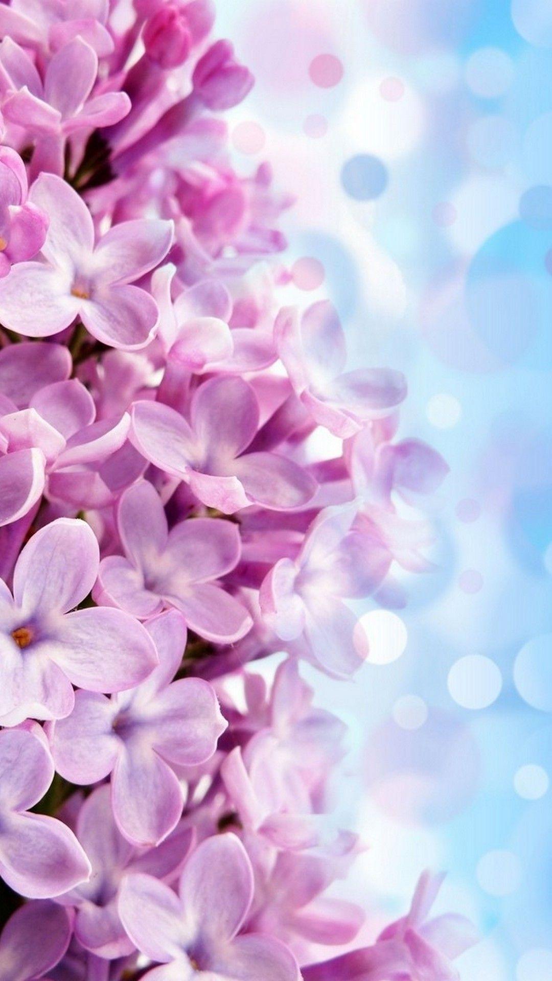 iPhone Wallpaper HD Purple Flowers Best HD Wallpapers