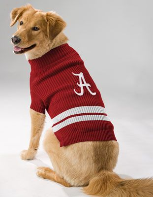 uk availability 3206e 9c60e Alabama Crimson Tide Dog Sweater ... i am getting this for ...