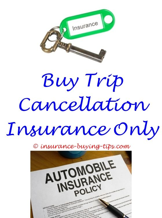 Health Insurance Quotes Nj Buying Trades Against Car Insurance  Buying Individual Health