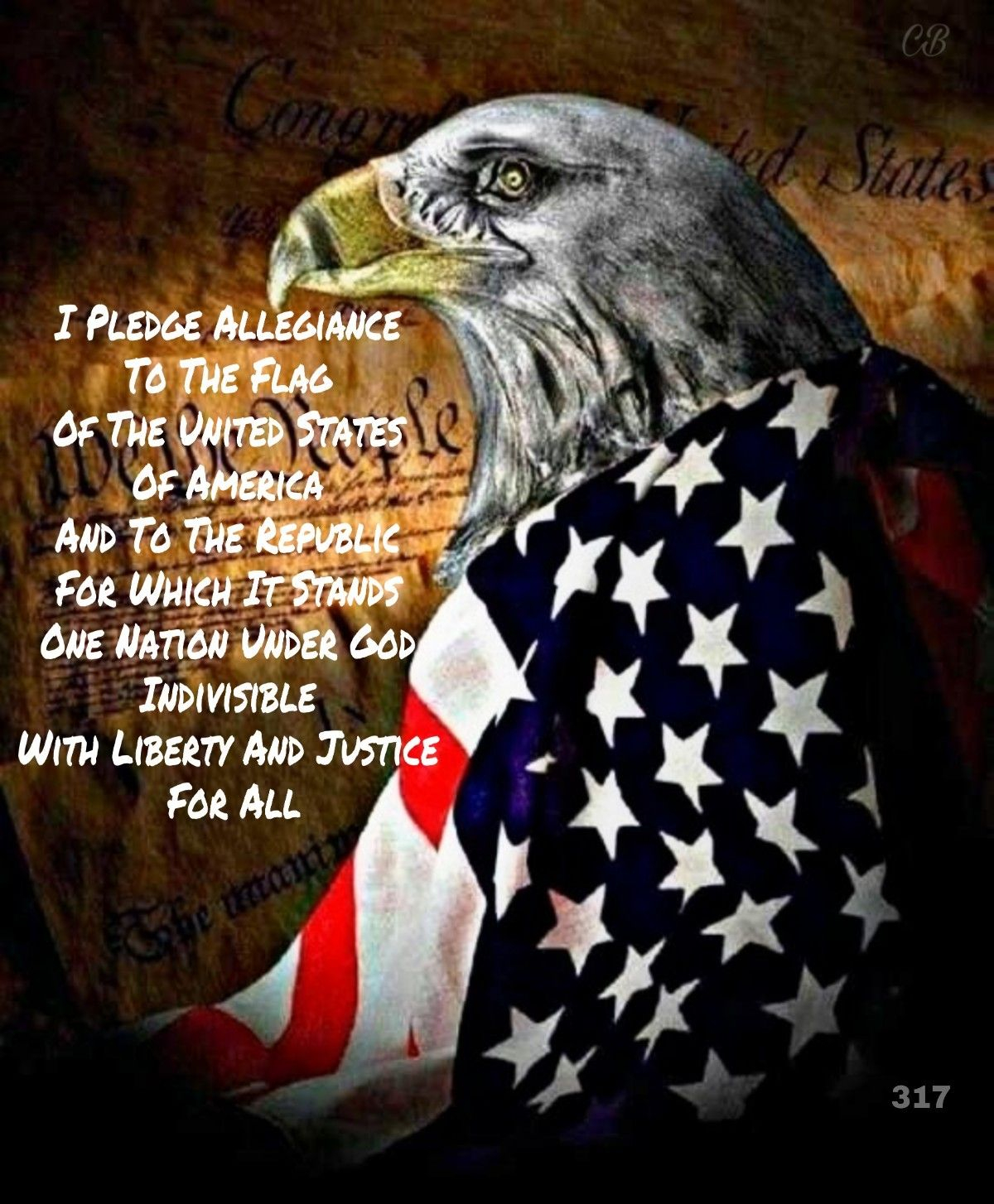 Pin By Chris Binder On Pledge Of Allegiance