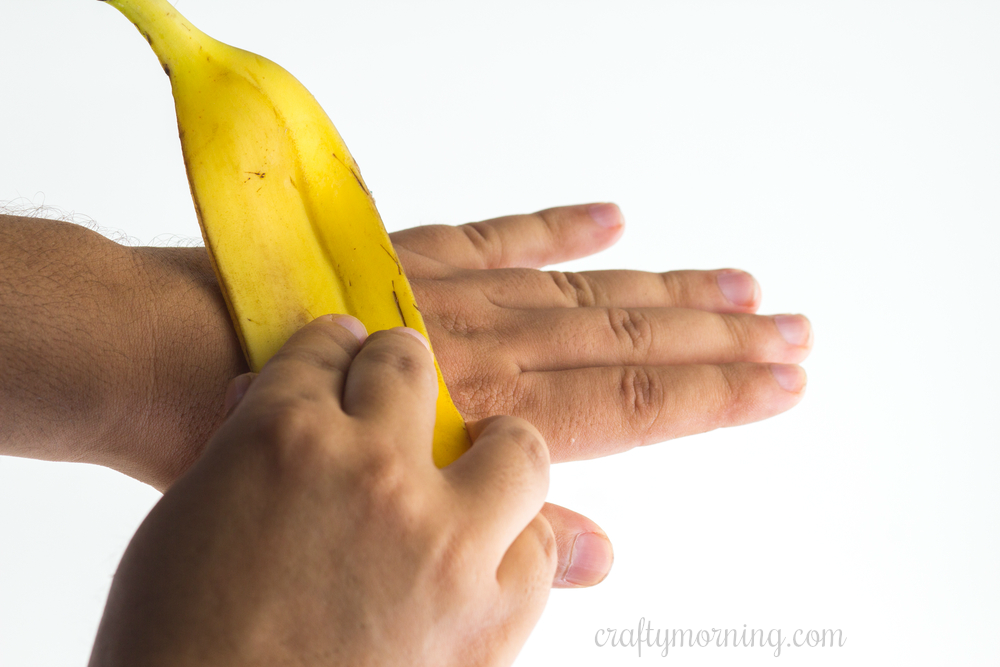 12 Surprising Benefits Of Banana Peels Crafty Morning Banana Benefits Banana Peel Banana