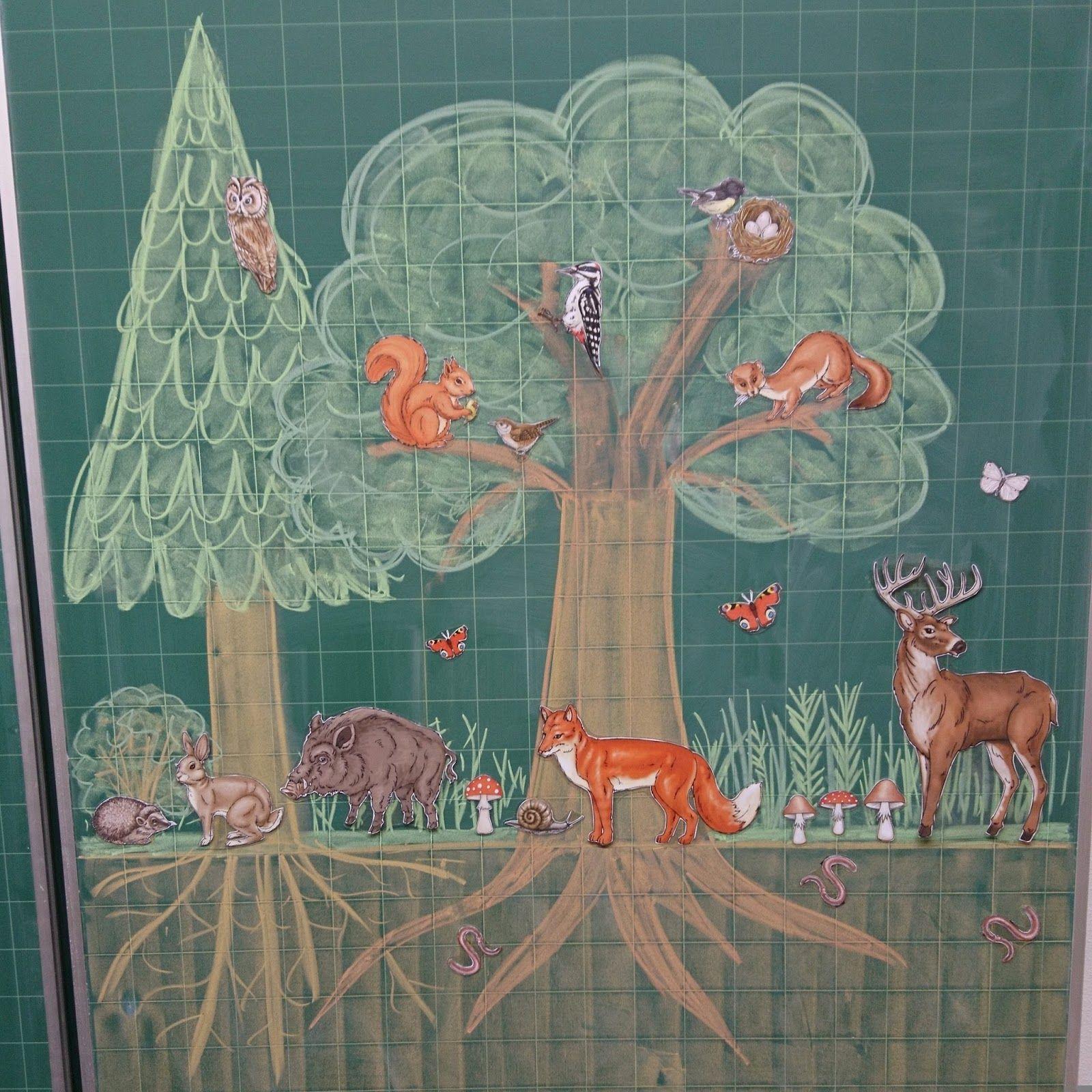 Einblick In Das Aktuelle Thema Wald Wald Grundschule Projekte Im Kindergarten Grundschule