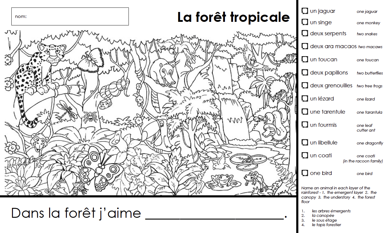 la forêt tropicale, French rainforest unit grades k and 1