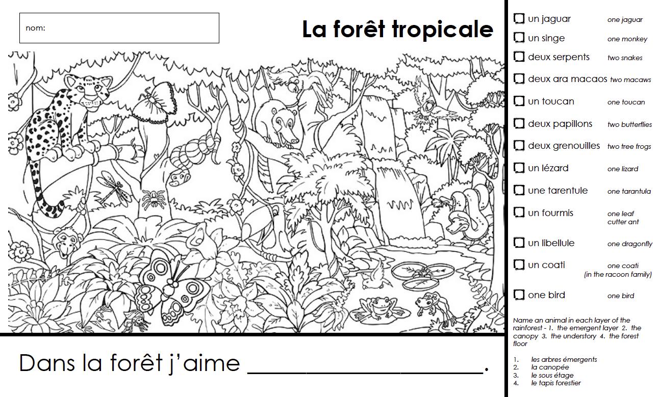 La Foret Tropicale French Rainforest Unit Grades K And 1