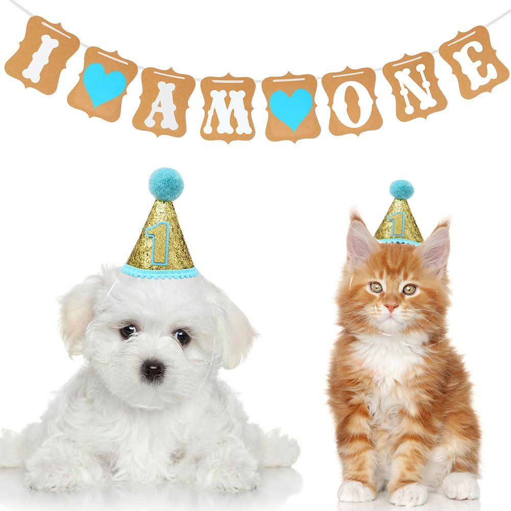 Pet Birthday Hat 1yearold Banner Birthday Party Decorations Funny Costume For Small Pets Dogs Cats Blue Check Out The Small Pets Animal Birthday Birthday Hat