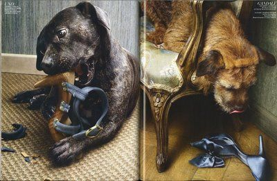 Adorable Marie Claire ads shot by Peter Lippmann