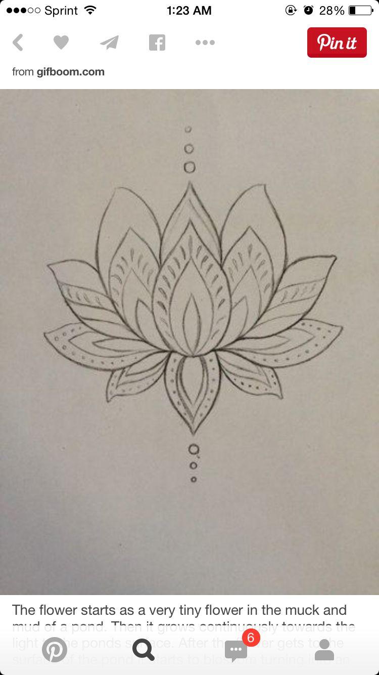 Lotus sketch tatuae pinterest lotus tattoo and hennas lotus sketch lotus meaninglotus flower izmirmasajfo Image collections