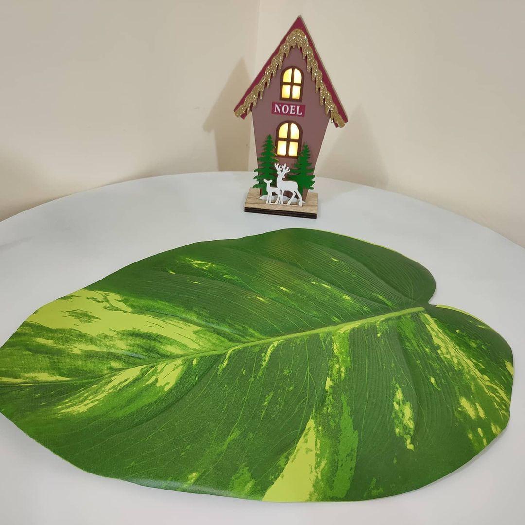 بيت العائلة On Instagram ورق تحت الصحن شكل ورقة اللبلاب السعر 1500 دينار يتوفر توصيل لكافة المحافظات بيت العائلة بغداد اكسبلور Plant Leaves Plants Leaves