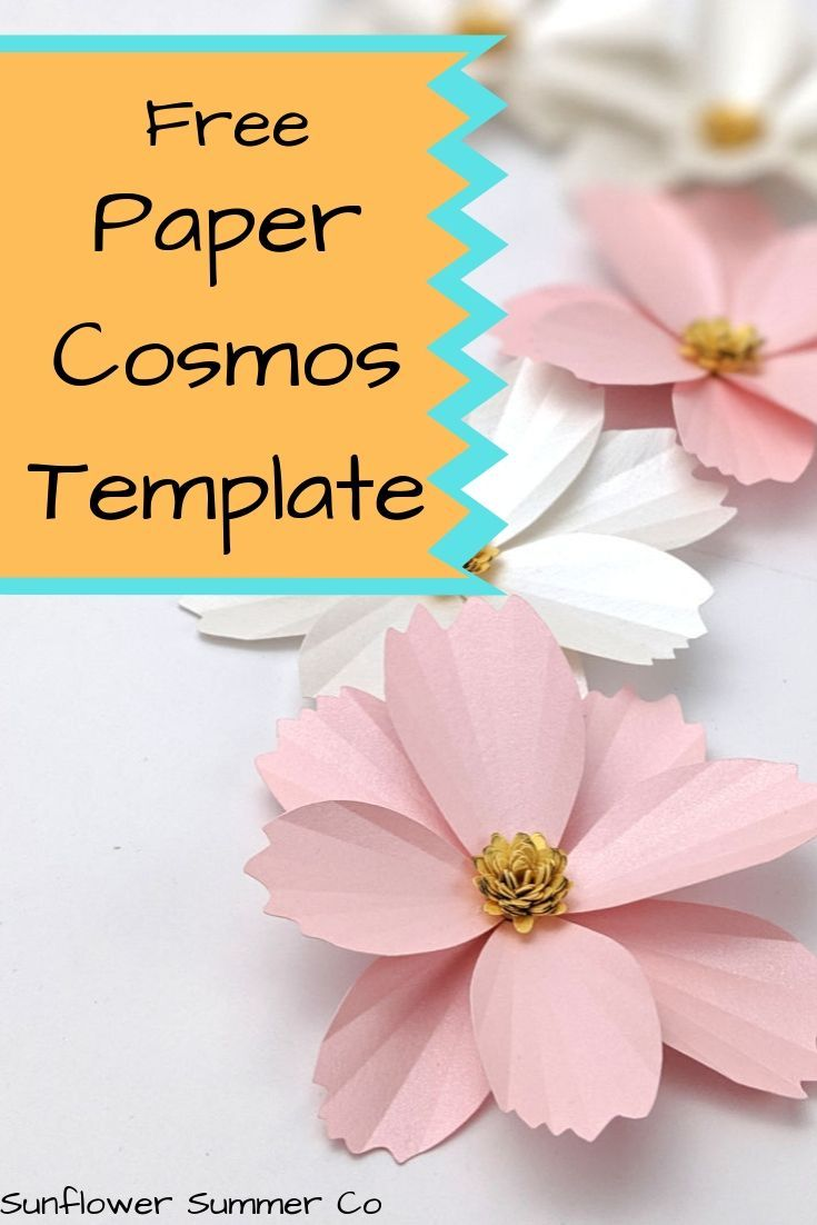 Free Template- How to make a Paper Cosmos