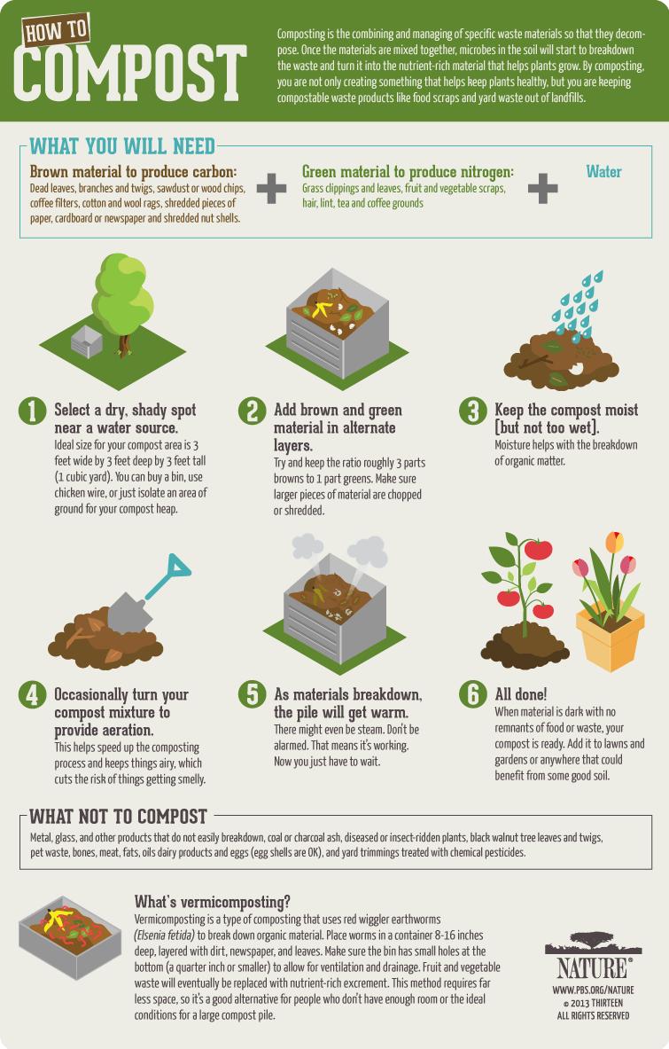 composting-steps.png (755×1183)