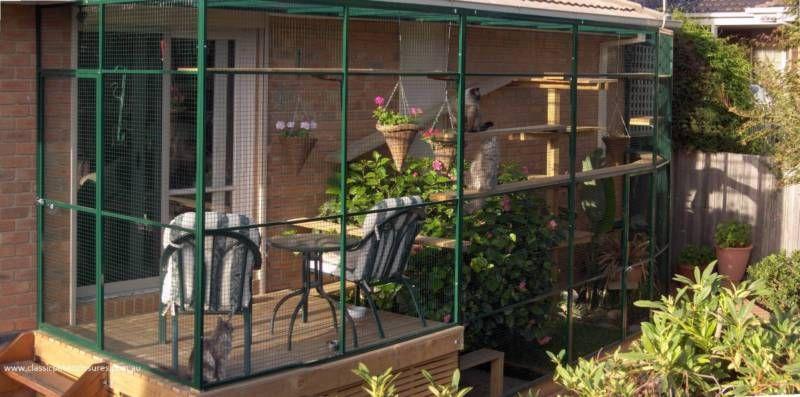 Custom Made Cat Homes Houses Enclosures Free Quotes Pet Products Gumtree Australia Darebin Area Pres Gumtree Australia Animal Quotes Enclosures