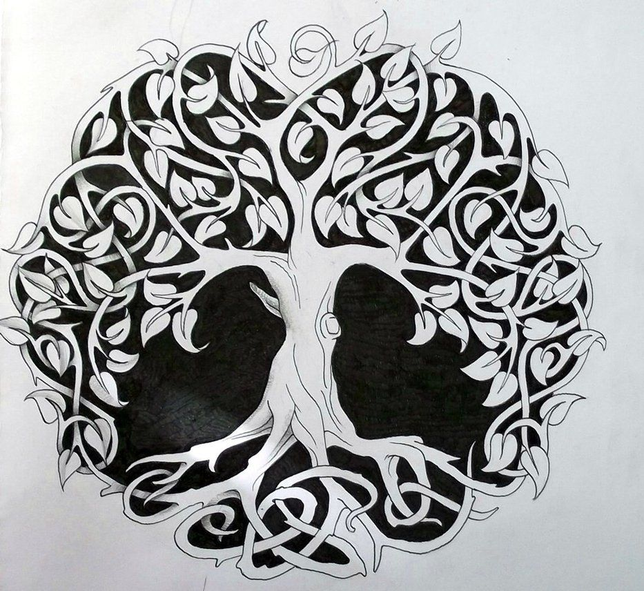 Celtic Tree Tattoos On Pinterest