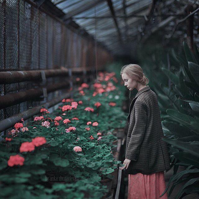 Instagram media by anka_zhuravleva_arts - A flower. ©Anka Zhuravleva