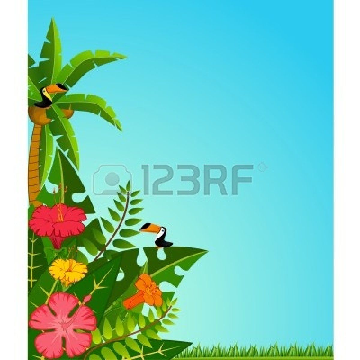 blank luau invitation borders clipart panda free clipart images [ 1200 x 1200 Pixel ]