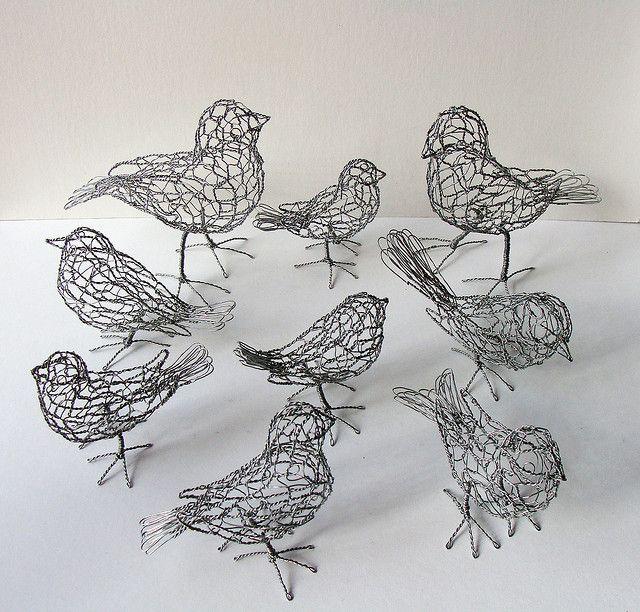 9 wire birds
