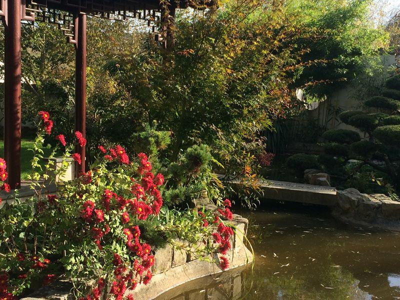 Le Jardin Yili Vous Ouvre Ses Portes Durant Paroles De Jardiniers Et