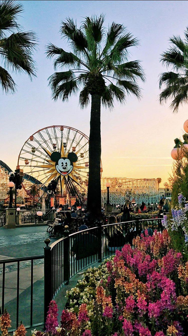 Tunameal Disneyland Photography Disneyland California Pictures Disneyland Pictures