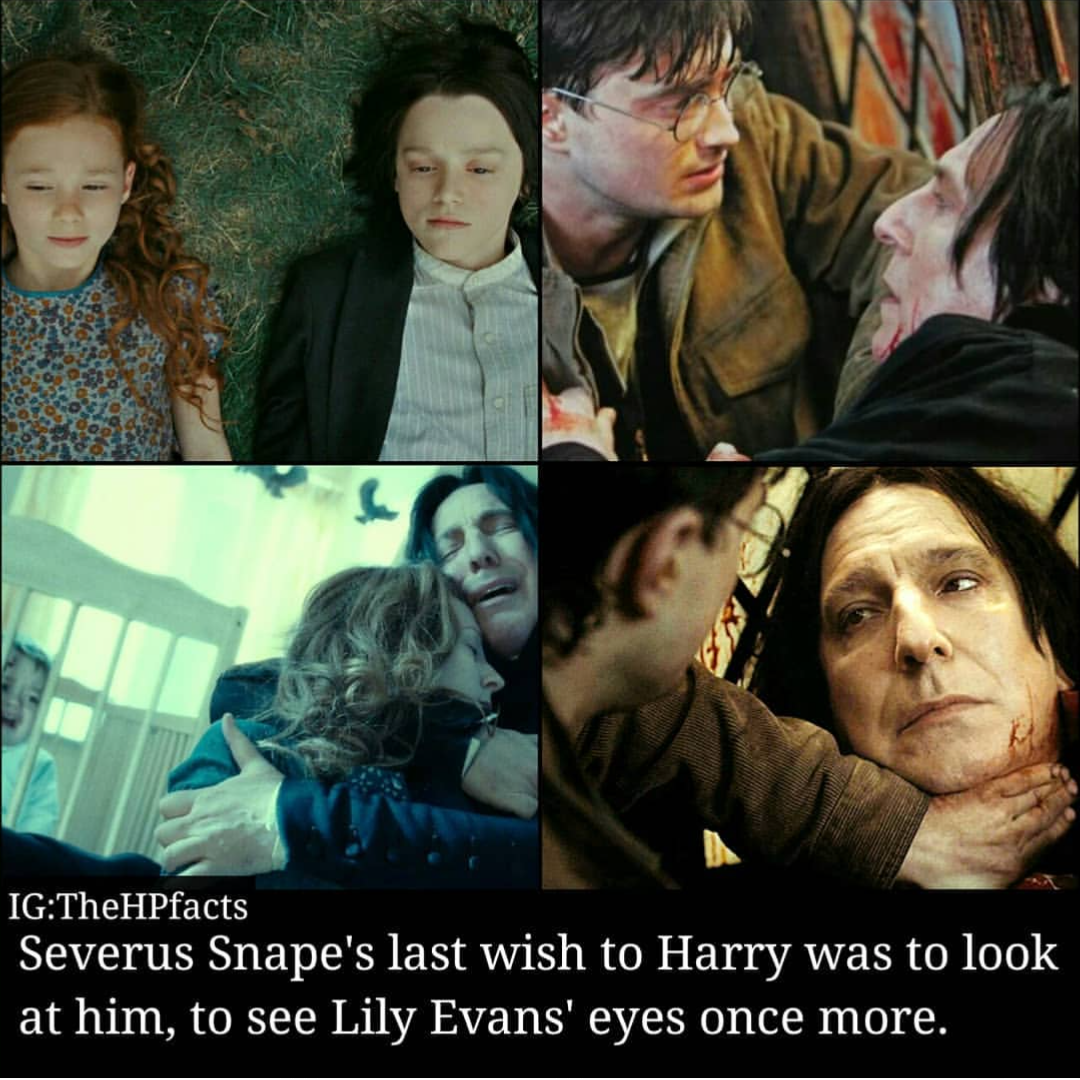 Pin By Farheen Shaik On Potter Snape And Lily Snape Scoundrel