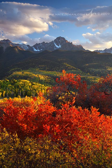 Autumn Fire by Nzeman - 14,150 ft Mt Sneffels - San Juan Mountains - Colorado rises above an extraordinary display of autumn color in the valley below.