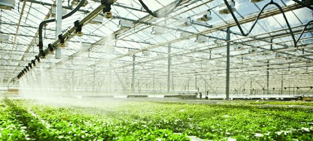 High Growth Potential In Greenhouse Irrigation System Offers Opportunities To Market Leaders In The Industry - The Global Greenhouse Irrigation System Market is estimated to grow from $730.7 million in 2014 to $1,185.3 million by 2019, at a CAGR of 10.2% from 2014 to 2019