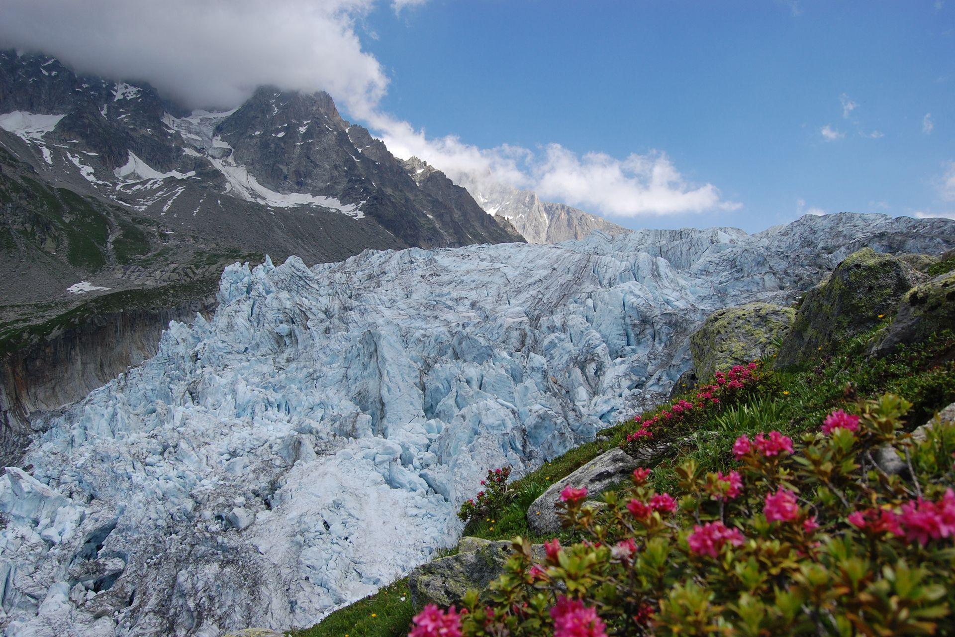 terre nature glacier printemps alps montagne nuage fleur fond d 39 cran paysages et nature. Black Bedroom Furniture Sets. Home Design Ideas