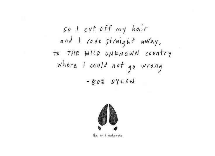 Pin by The Wild Unknown on the wild unknown artwork | Bob dylan