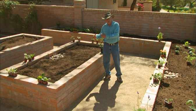 9514a7e4292cb27ae7a87b556865bc07 - Vegetable Gardening In The Desert Southwest