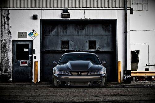 Ford Mustangs Svt Cobra 2 By Lovelife 81 On Flickr Ford Mustang Cobra Ford Mustang Mustang Cobra
