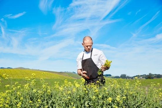 Interview w/ #Chef Aaron Meneghelli #TheFarm @TheCarnerosInn http://jsfashionista.com/interview-chef-aaron-meneghelli-carneros-inn-napa-farm-restaurant/ #Napa #Hotel #Food #Amazing
