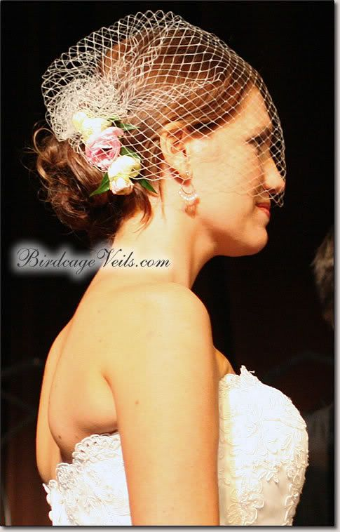 Updos With Blusher Veil