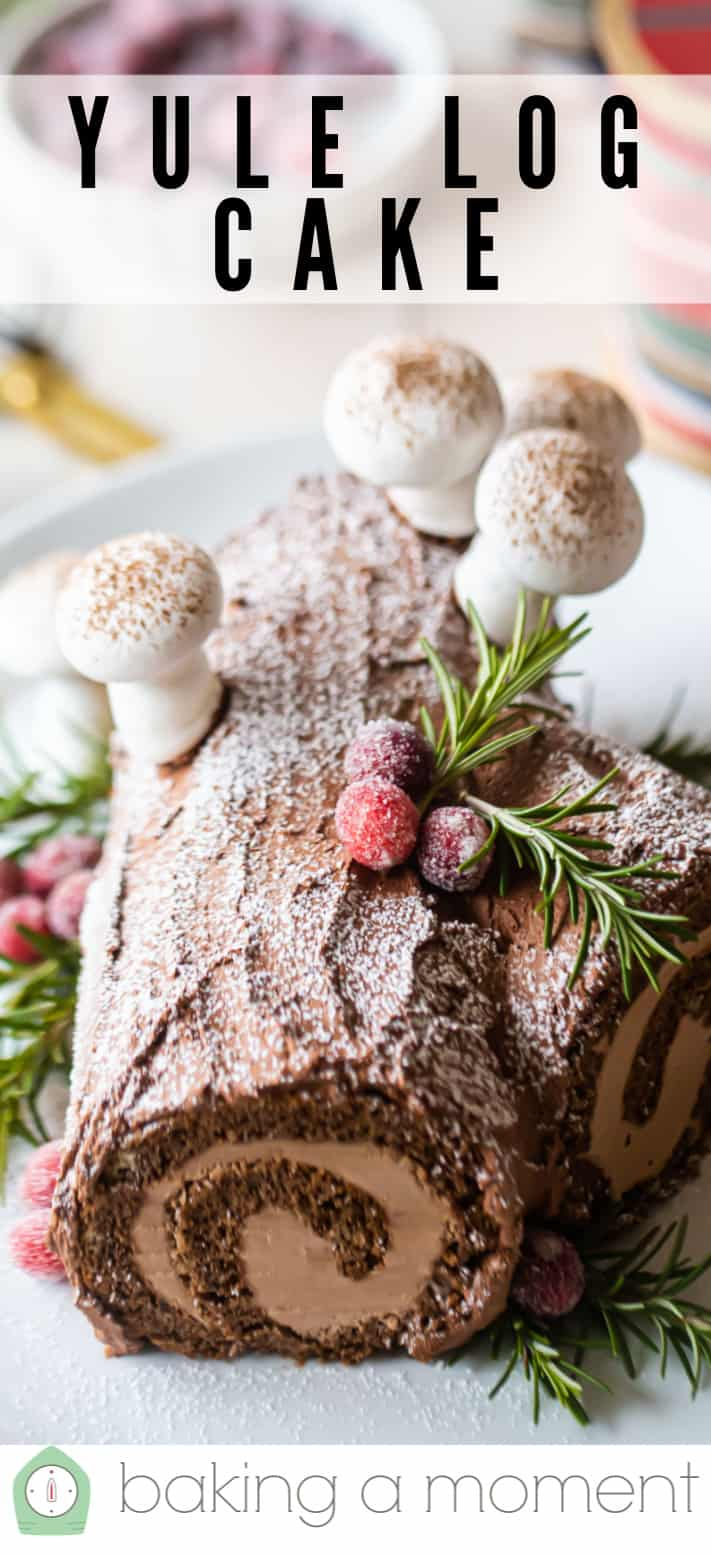 Chocolate Yule Log Recipe: Delicious & so impressive! -Baking a Moment