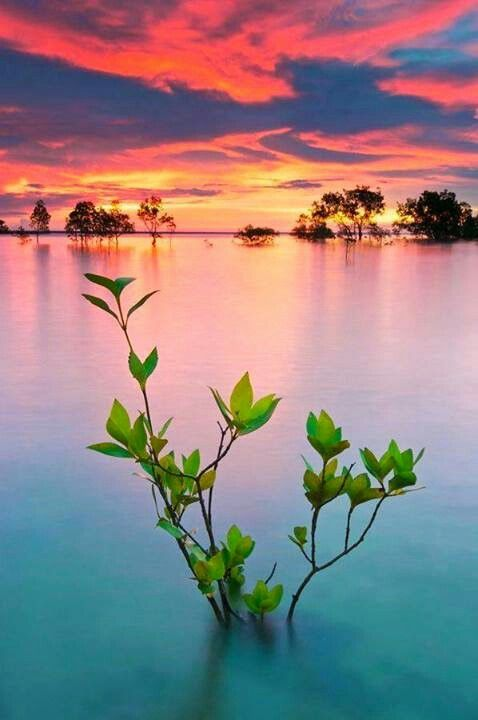 Stunning... Darwin, Australia