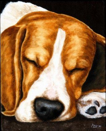 Beagle Dreams Beagle Painting Original Art Painting By Tanya
