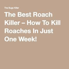 The Best Roach Killer – How To Kill Roaches In Just One Week ...