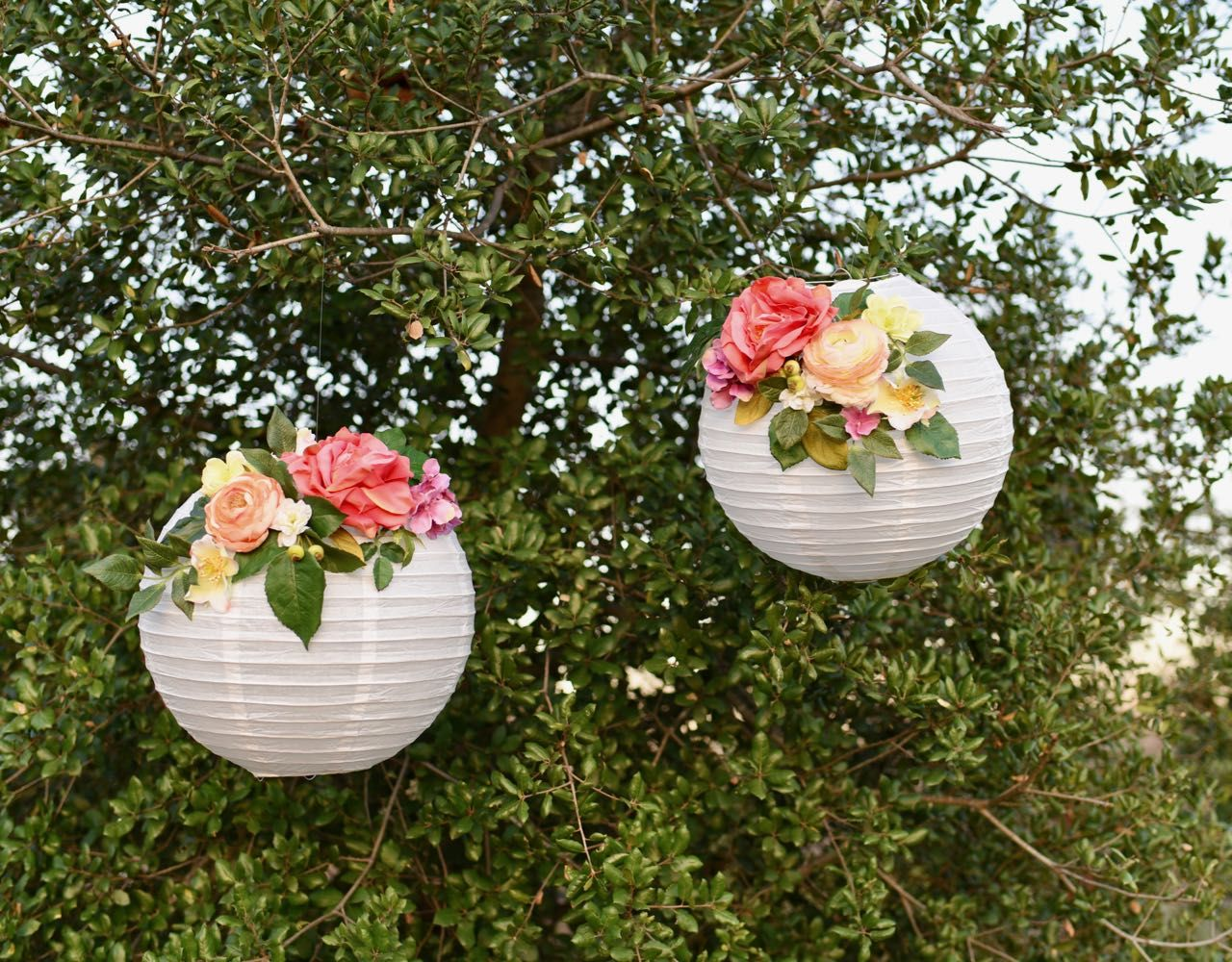 Diy Flower Paper Lanterns Tutorial Flower Paper Diy Flower And