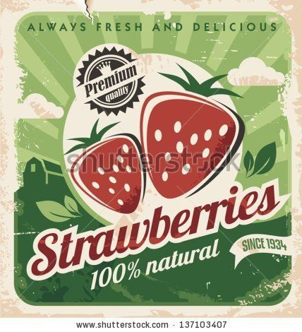 Vintage poster template for strawberry farm. Retro fruit label design. Vector old paper texture food background. by lukeruk, via ShutterStock