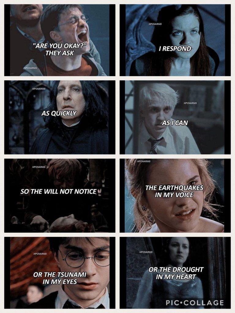 Pin On Xari Poter