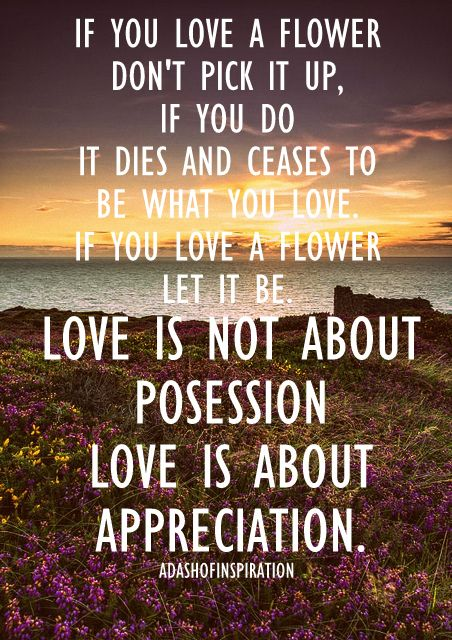 Love Is Not About Possession Love Is About Appreciation The