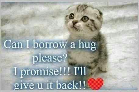 Pretty Please....