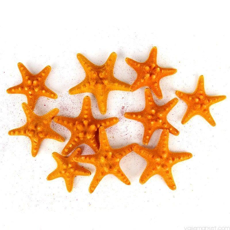 12 Piece Nautical Crafts Knobby Starfish Figurine Set