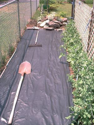 Fight Weeds With Landscape Fabric Landscape Fabric What Is