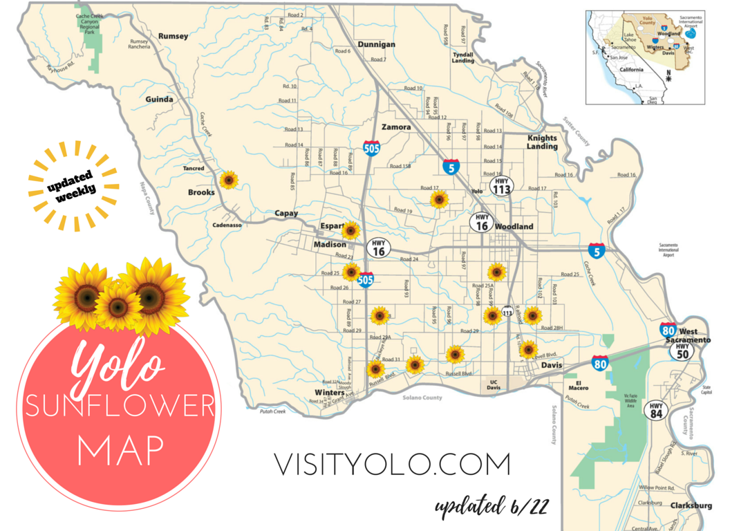 Sunflower Field Viewing Map In Yolo County Sunflowers Pinterest