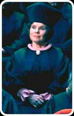 Delores Umbridge Harry Potter Halloween Harry Potter Harry Potter Umbridge