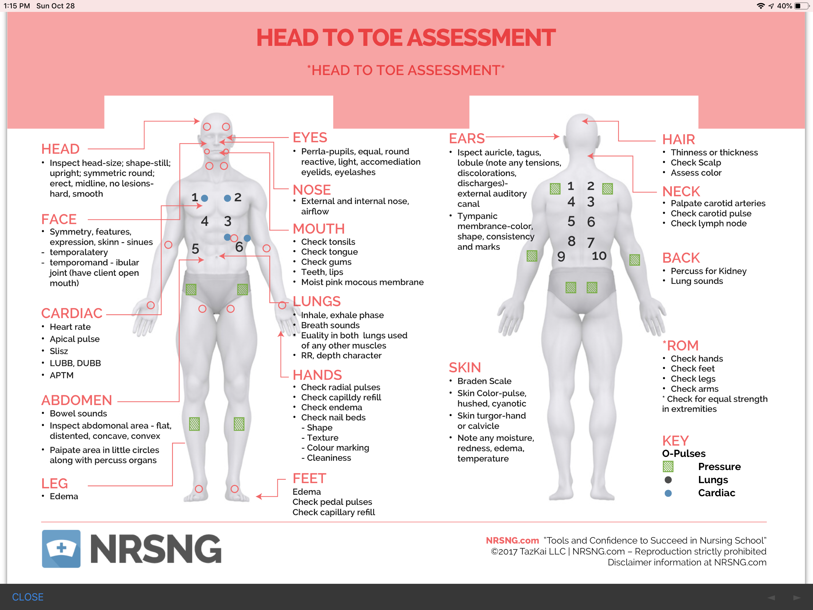 Pin By Perry Whybrew On Nursing Physical Assessment